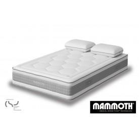 Mammoth Shine Essential Mattress